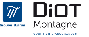 logo-diot-internet